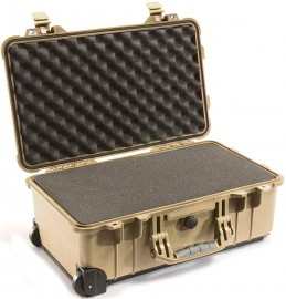 1510 ProtectorCarry-On Case